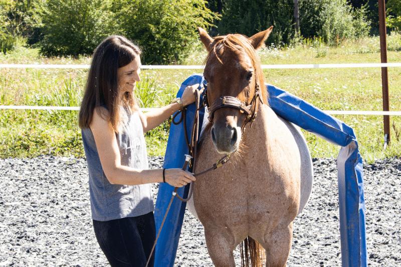 Wie Pferde denken: Was würde dein Pferd über dich sagen? 1