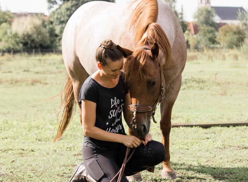 Mindset Pferdetraining
