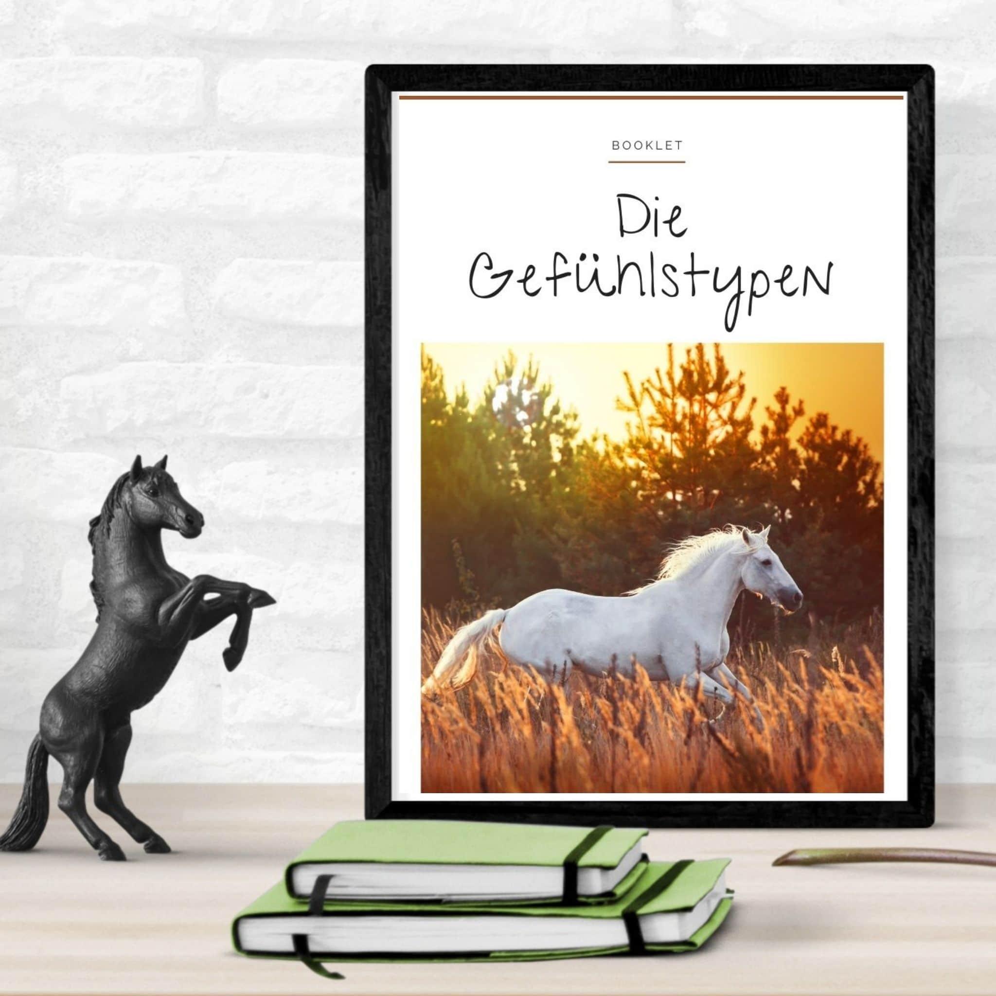 """Schnapp dir den Pferde Onlinekurs """"Embodiment for Horses"""" 3"""