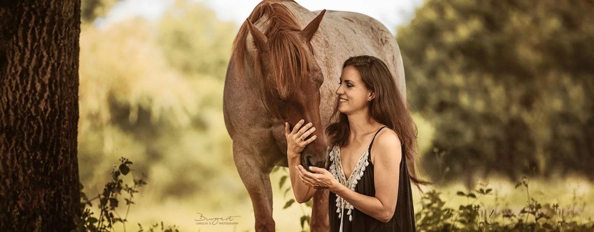 Dominanz Pferde falsch