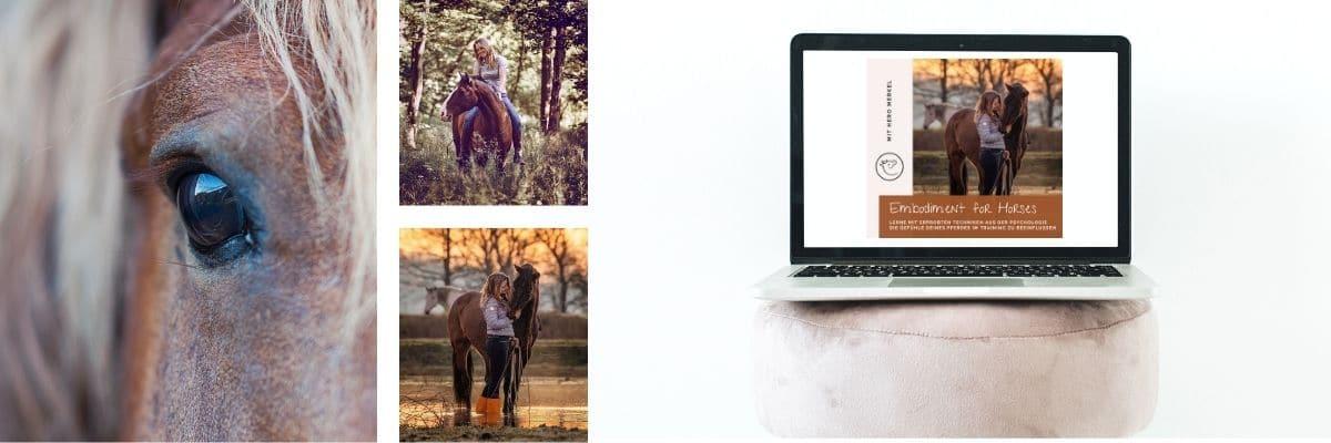 """Schnapp dir den Pferde Onlinekurs """"Embodiment for Horses"""" 1"""