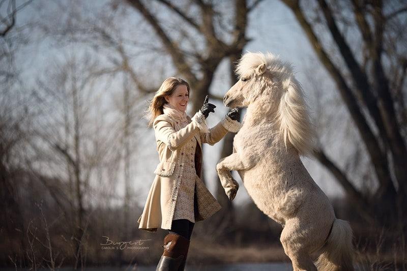 Hero lässt weißes Pony steigen