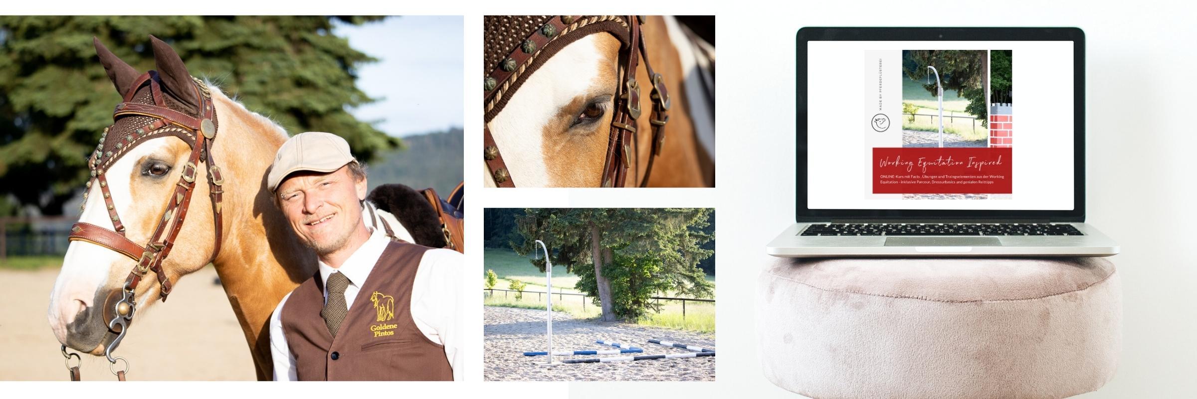 Working Equitation! Für mehr Bindung und Vertrauen 1