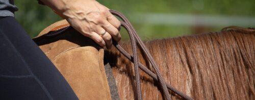 Slider Ausschnitt Reiter auf Pferd hält Zügel in den Händen