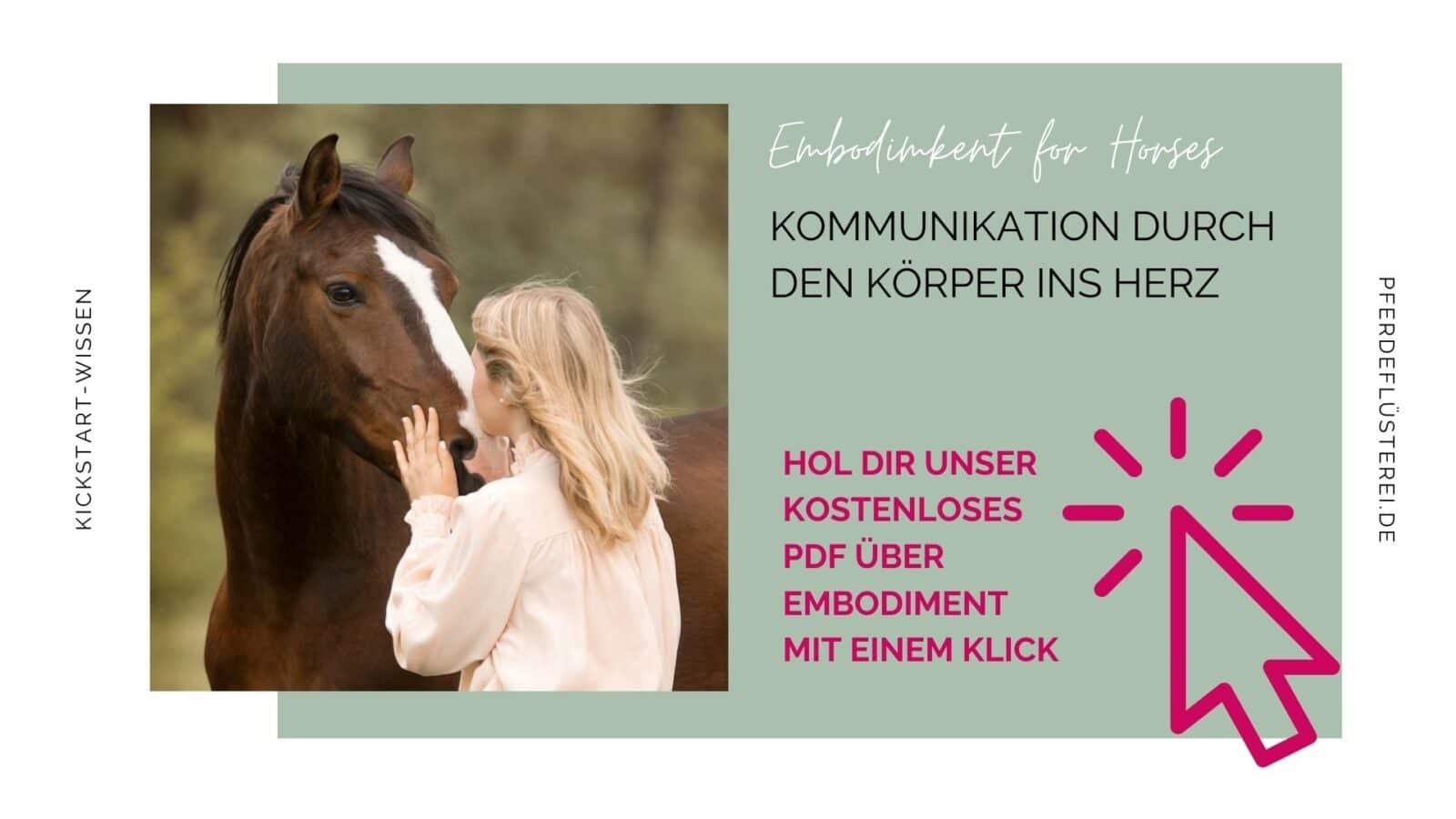 Embodiment für Pferde! Wie du das Gefühl deines Pferdes im Training beeinflusst 1