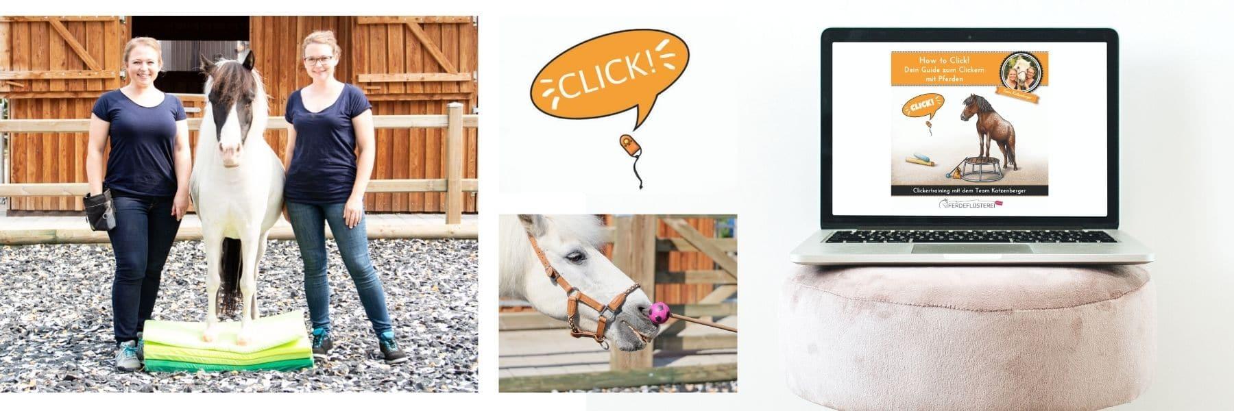 Clicker Landing Page Campus