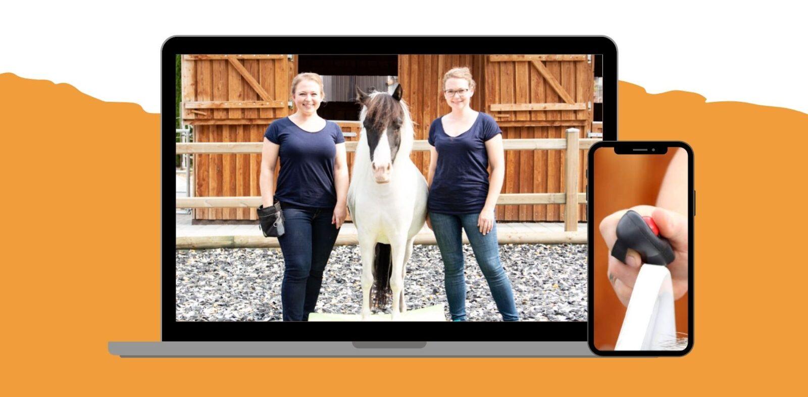 """Schnapp dir den Pferde Onlinekurs """"How To Clicker"""" 1"""