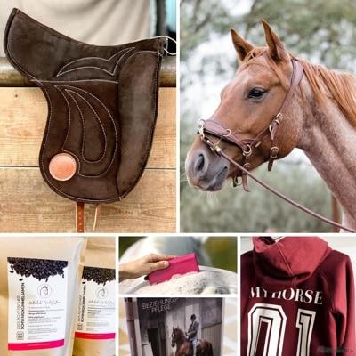 Pferdeflüsterei.de - Weil dein Pferd dich dafür lieben wird. 2