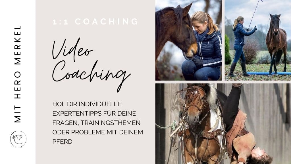 Individuelles Coaching Hero Merkel
